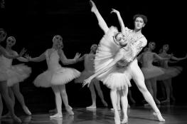 Zamość Wydarzenie Kulturalne Royal Lviv Ballet